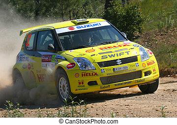 world rally car - suzuki world rally car racing on the...