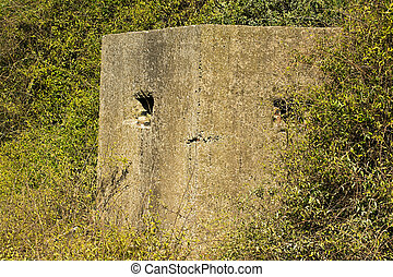 world war two pill box - Old ruin of a an allied world war...