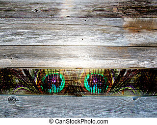 Worn Antique Wood Boards Background Peacock