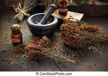 wort., natural, s., herbery, medicina herbaria, medicina, ...