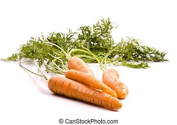 wortels, bio