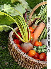 Woven basket with fresh produce from a vegetable garden