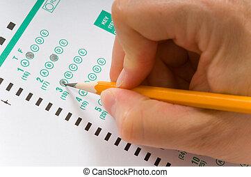 wpływy, egzamin