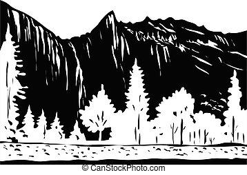 WPA monochrome Bridalveil Fall in Yosemite National Park in Yosemite Valley California USA Grayscale Black and White