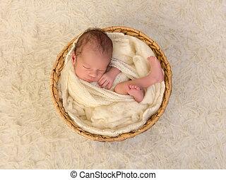 Wrapped newborn baby sleeping in a wicker basket