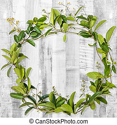 wreath creeper on wooden background