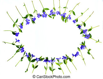 Wreath frame with Periwinkle and green leaves on white background. Flat lay, top view