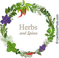 wreath of herbs and spices on a white background