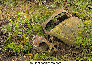 Wrecked beetle car in forest