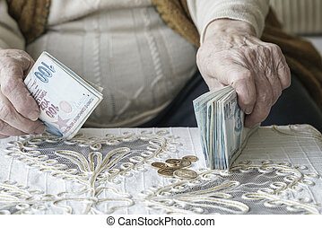 Wrinkled hands counting Turkish Lira banknotes