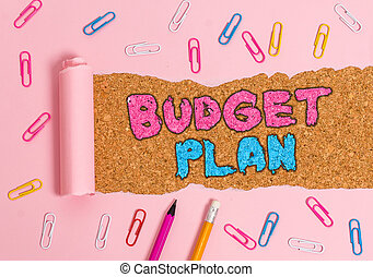 Writing note showing Budget Plan. Business photo showcasing financial schedule for a defined period of time usually year.