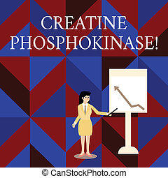 Writing note showing Creatine Phosphokinase. Business concept for protein that aids chemical changes in the body Woman Holding Stick Pointing to Chart of Arrow on Whiteboard