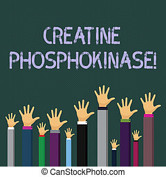 Writing note showing Creatine Phosphokinase. Business concept for protein that aids chemical changes in the body Businessmen Hands Raising Up Above the Head, Palm In Front