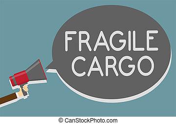 Writing note showing Fragile Cargo. Business photo showcasing Breakable Handle with Care Bubble Wrap Glass Hazardous Goods Man holding megaphone loudspeaker speech bubble message speaking loud.