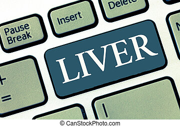 Writing note showing Liver. Business photo showcasing Large...