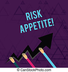 Writing note showing Risk Appetite. Business photo showcasing the level of risk an organization is prepared to accept Hands Holding Zigzag Lightning Arrow Pointing and Going Up.