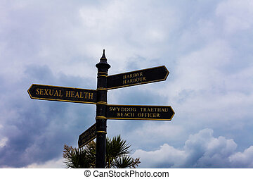 Writing note showing Sexual Health. Business photo ...
