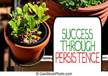 Writing note showing Success Through Persistence. Business...