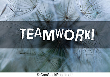 Writing note showing Teamwork. Business photo showcasing combined action of group especially when effective and efficient.