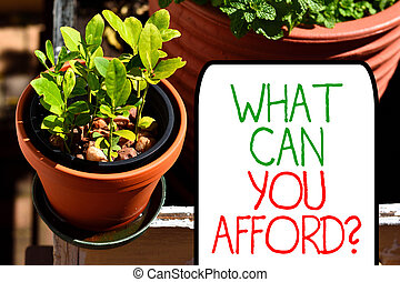Writing note showing What Can You Afford Question. Business photo showcasing Give us your budget availability of money Plentiful plants on a small pot placed side by side with a large one.