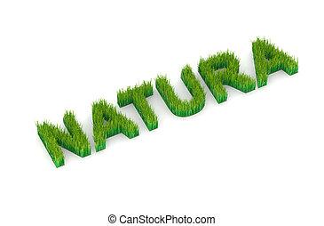 "written ""natura"" with grass 3d illustration"