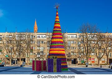 wroclaw, polen, träd, jul