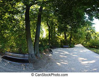 wroclaw, polska, park, spokojny
