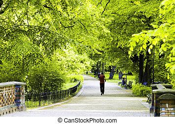 wroclaw, pont, marche, groupe, gens, pologne, ville parc