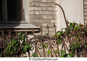 Wrought iron rusty fence