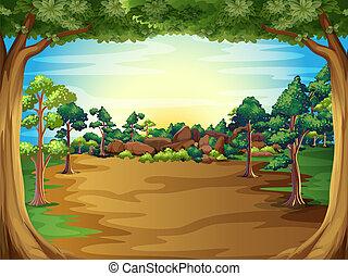 wschód słońca, drzewa, las