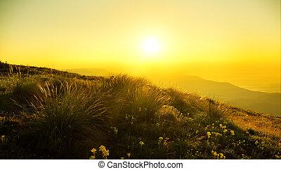wschód słońca, w, mountain.