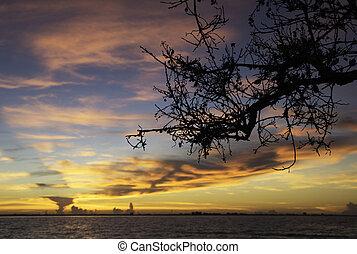 wschód słońca, w, sanibel wyspa, flordia