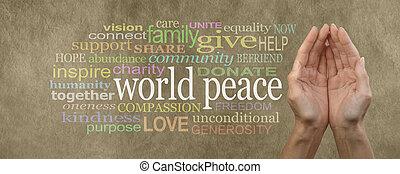 współpracować, do, światowy pokój