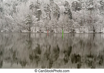 wunderland, weinlese, winter