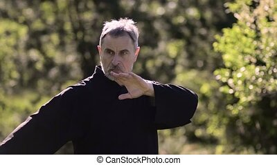 Wushu coach do exercise tai chi in the forest. Smooth arm movements