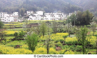wuyuan48.mov - beautiful old village in China