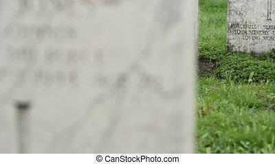 Changing focus beetween two marble world war II, heroes tombstones.
