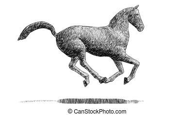 wyścigi, koń