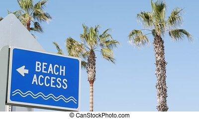 wybrzeże, oceanside, symbol, kalifornia, dłonie, deptak, ...