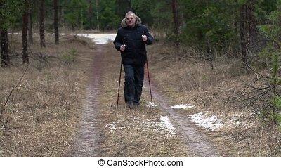 wycieczkowicz, ścieżka, pieszy, las