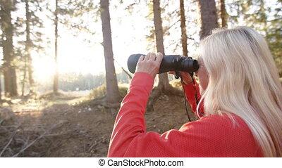 wycieczkowicz, używając, reputacja, kobieta, outdoors, ...