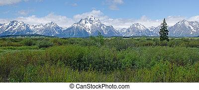 wyoming, estados unidos de américa, parque nacional, grand ...