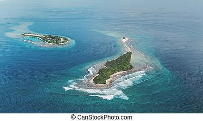 wyspy, okolica, malediwy, dwa, zwrotnik