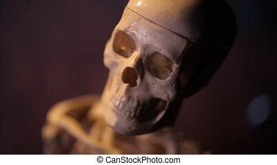 wzór szkielet, ludzki