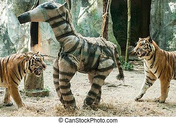 wzbogacenie, zabawka, dla, tiger, w, ogród zoologiczny