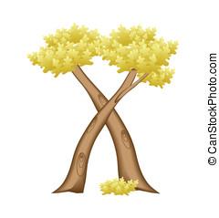 x , δέντρο , γράμμα , μορφή