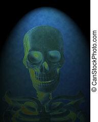 x 線, の, a, 人間の頭骨