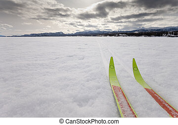 X-country ski winter sport - Cross country skiing. Skis in...