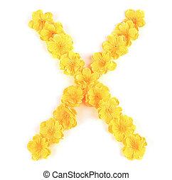 x, flor, alphabet., letra