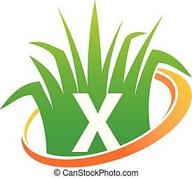 x, pelouse, initiale, centre, soin